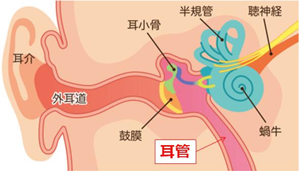 耳管開放症の症状・原因・治療法